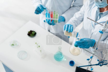 cropped view of biologists in white coats doing test in lab