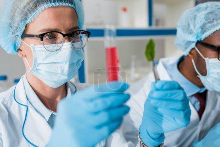 Photo pour Foyer sélectif des biologistes regardant tube à essai et feuille, collègue afro-américain sur fond - image libre de droit