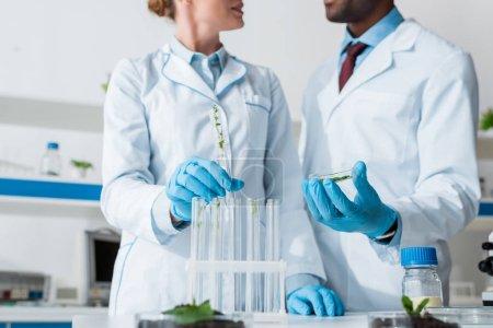 Photo pour Vue recadrée de biologistes multiculturels parlant en laboratoire - image libre de droit