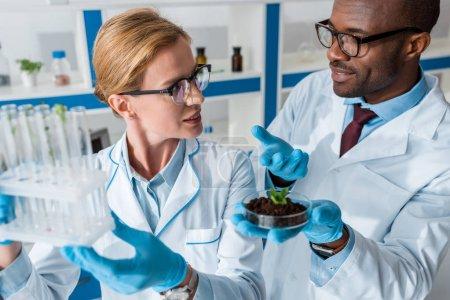 Photo pour Biologistes multiculturels en blouse blanche tenant des éprouvettes et parlant en laboratoire - image libre de droit