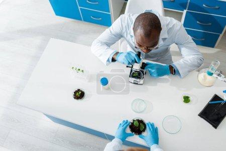 Photo pour Vue aérienne d'un biologiste africain américain au microscope et d'un collègue tenant des feuilles - image libre de droit