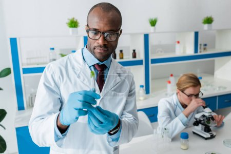 Photo pour Focus sélectif of african american biologist holding test tube and colleague using microscope on background - image libre de droit