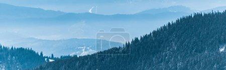 malerischer Blick auf schneebedeckte Berge mit Kiefern und weißen, flauschigen Wolken, Panoramaaufnahme
