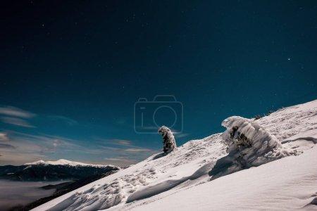 Photo pour Vue panoramique d'une montagne enneigée avec des pins et des nuages blancs touffus dans le ciel sombre en soirée - image libre de droit