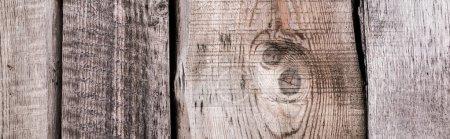 Photo pour Surface grise texturée naturelle en bois altérée avec espace de copie, prise de vue panoramique - image libre de droit