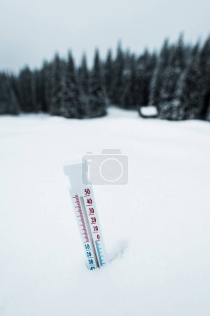 thermometer in mountains covered with snow with pine trees