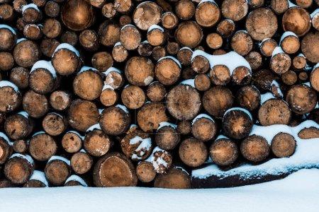 Photo pour Pile de grumes en bois recouvert de neige pure - image libre de droit