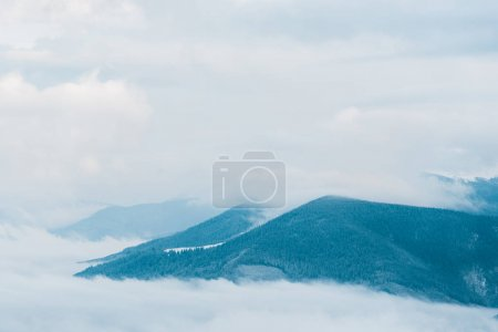 Photo for Scenic view of snowy mountains with pine trees in white fluffy clouds - Royalty Free Image