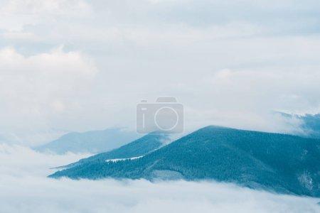 Photo pour Vue panoramique sur les montagnes enneigées avec des pins dans des nuages blancs moelleux - image libre de droit