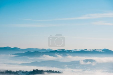 Photo pour Vue panoramique des montagnes enneigées avec des pins dans des nuages blancs touffus - image libre de droit
