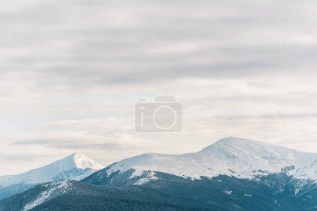 Foto de Vista panorámica de las montañas nevadas con nubes blancas y floridas. - Imagen libre de derechos