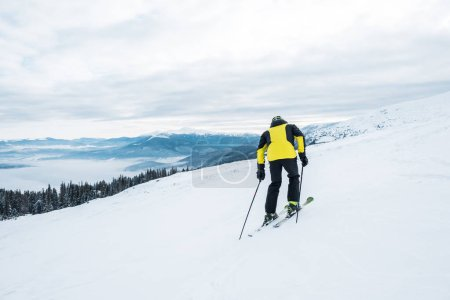 Photo for Back view of sportsman holding ski sticks and skiing on white slope - Royalty Free Image