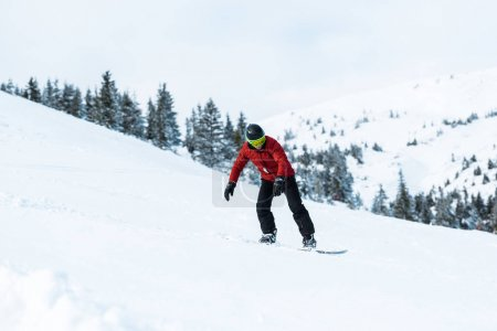 Photo for Athletic snowboarder in helmet riding on slope in mountains - Royalty Free Image