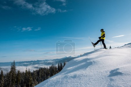 Photo for Side view of skier holding ski sticks and making step against blue sky in mountains - Royalty Free Image