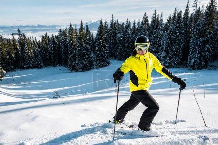 Photo pour Skieur portant des lunettes de sécurité marchant sur la neige près des sapins - image libre de droit