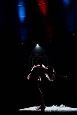 Photo pour Silhouette d'acrobate aérien sur corde dans l'arène du cirque - image libre de droit