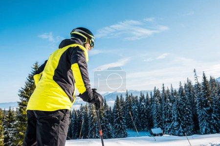 Photo pour Vue à angle faible d'un skieur en casque debout sur la neige près de sapins - image libre de droit