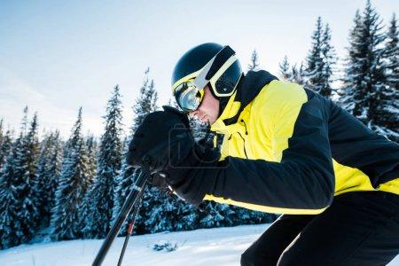 Foto de Esquiador en helmet esquí en nieve cerca de los primos. - Imagen libre de derechos