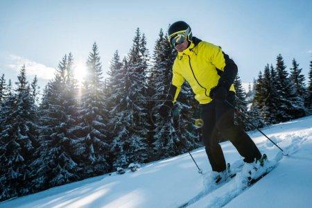 Foto de Sol cerca del esquiador en el casco de esquí sobre nieve cerca de los primos. - Imagen libre de derechos