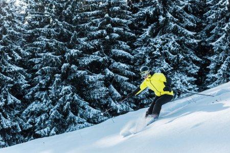 Photo pour Skieur en lunettes ski sur neige près des arbres - image libre de droit