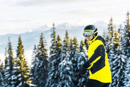 Photo pour Skieur en lunettes et casque se tenant debout près de sapins verts dans les montagnes - image libre de droit