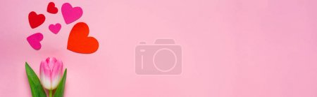 Photo for Top view of paper hearts and tulip on pink background, panoramic shot - Royalty Free Image