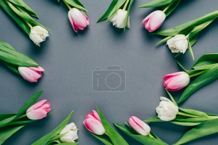 Photo for Top view of frame of tulips on grey background with copy space - Royalty Free Image