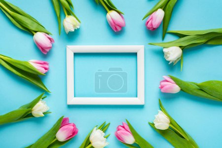 Photo for Top view of tulips around empty white frame on blue surface - Royalty Free Image