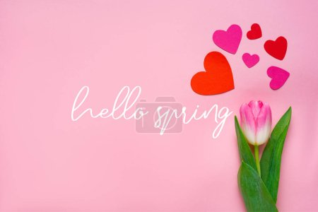 Photo pour Top view of paper hearts and tulip on pink background, hello spring illustration - image libre de droit