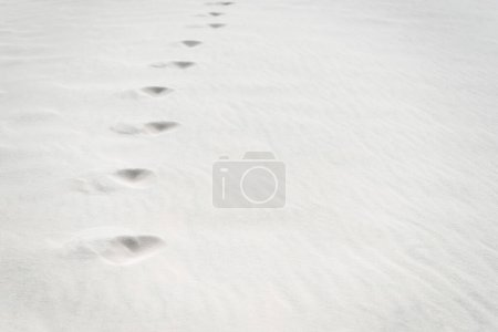 Photo pour Plage avec traces sur sable blanc propre et texturé - image libre de droit