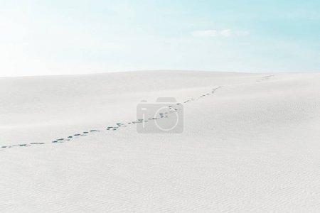 Photo pour Belle plage avec des traces sur sable blanc et ciel bleu - image libre de droit