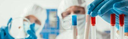 Photo pour Foyer sélectif du biochimiste prenant un tube à essai près d'un collègue tenant une boîte de Pétri, plan panoramique - image libre de droit