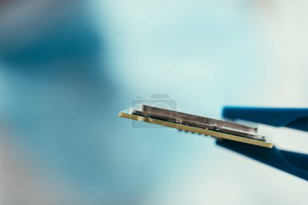 Photo for Selective focus of tweezers with computer microchip - Royalty Free Image
