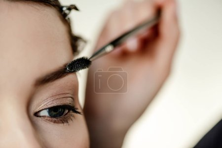 Photo for Cropped view of makeup artist styling eyebrow of woman - Royalty Free Image