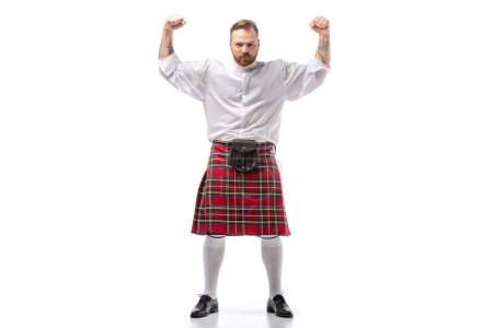 Photo for Strong Scottish redhead man in red kilt showing fists on white background - Royalty Free Image