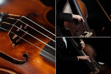 Photo for Collage with professional musician playing on contrabass isolated on black - Royalty Free Image
