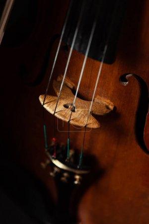 Photo pour Gros plan du violon professionnel, mise au point sélective - image libre de droit