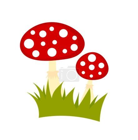 Toadstools mushrooms vector