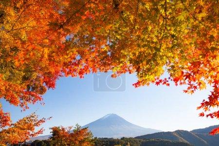 Mountain fuji landscape
