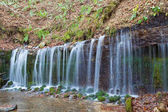 Shiraito Waterfall in forest