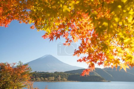 Mountain fuji landscape