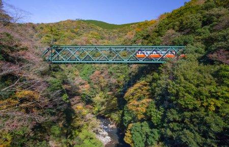 Mountain landscape with railway bridge