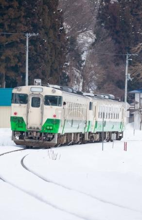snow with local train
