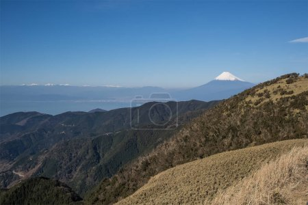 Mountain Fuji and Suruga bay