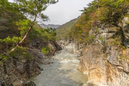 Ryuou Valley , Stream of the Kinugawa River at Nikko in autumn