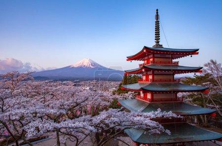 landscape of mountain Fuji and Chureito red pagoda with sakura trees blossom