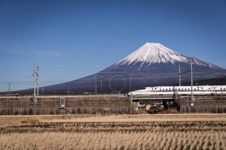 Shinkansen with train and Mount Fuji in spring season