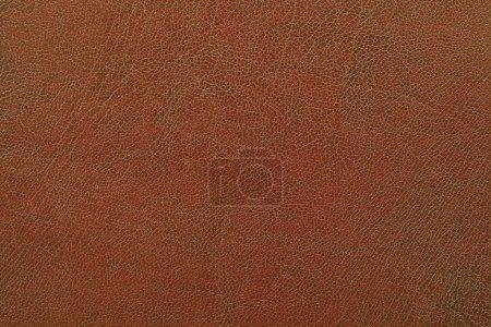 Photo pour Prise de vue macro d'une structure de similicuir brun - image libre de droit