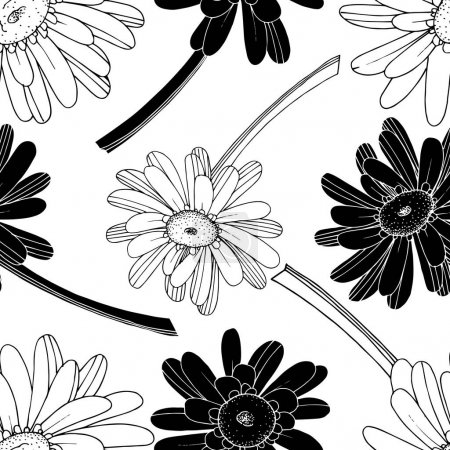 Illustration for Vector Gerbera floral botanical flower. Wild spring leaf wildflower isolated. Black and white engraved ink art. Seamless background pattern. Fabric wallpaper print texture. - Royalty Free Image