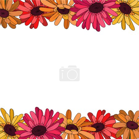 Illustration for Vector Gerbera floral botanical flower. Wild spring leaf wildflower isolated. Black and white engraved ink art. Frame border ornament square on white background. - Royalty Free Image